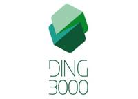 Ding3000